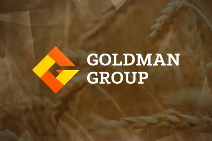 Goldman Group: итоги года